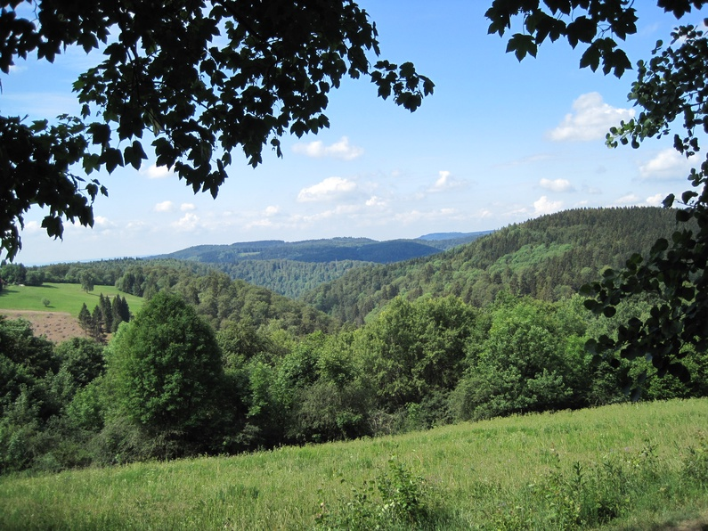 Blick ins Wolfsbachtal