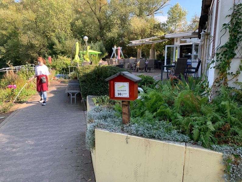 Stempelstation 30 Vienenburger See am Cafe Rosarium